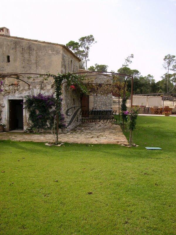 Jardineria anima verda for Creacion de jardines