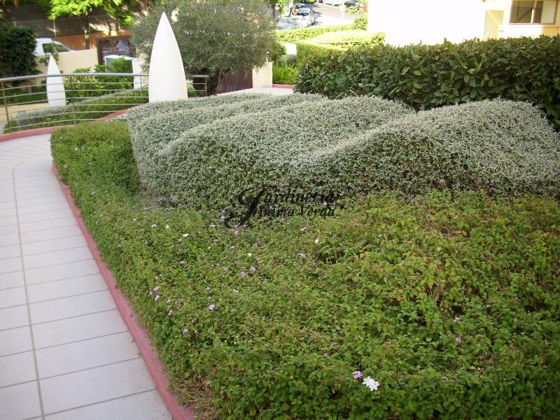 creacion_jardines-13