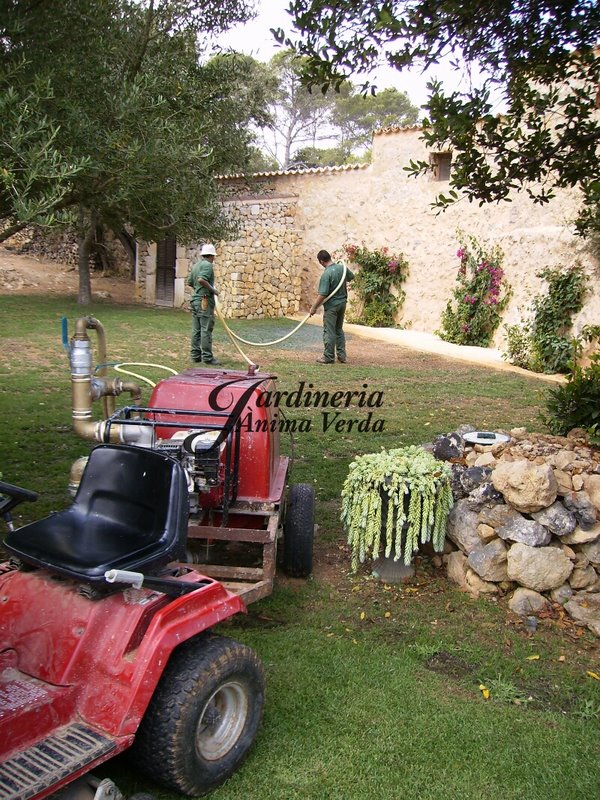 Hidrosembradora jardineria nima verda for Jardineria la noguera