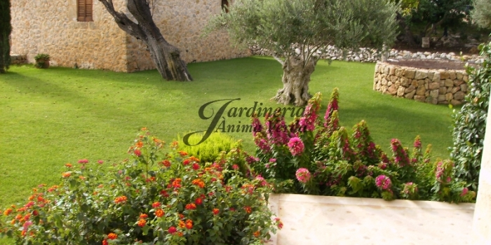 Creación de jardines