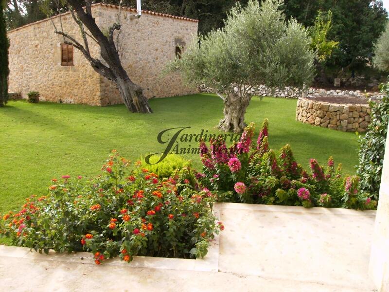 creaci n de jardines jardineria nima verda